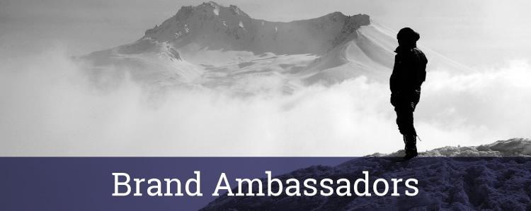 contact-ambassadors