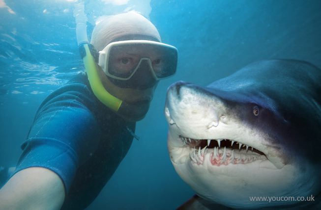 Selfie with a shark? Must be a vlogger